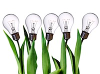 Light bulbs growing on plants.